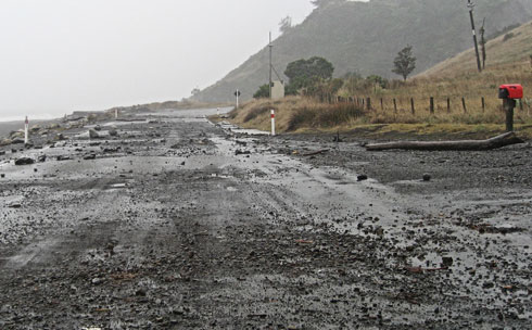 Rocks and tree trunks on the Palliser Bay road this morning