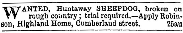 Huntaway wanted – Otago Daily Times, 1884.