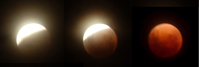 Lunar eclipse 20140415 at Martinborough