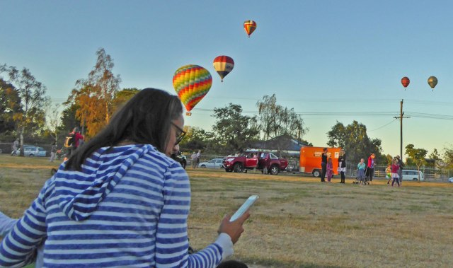 Martinborough-balloons-2016-10