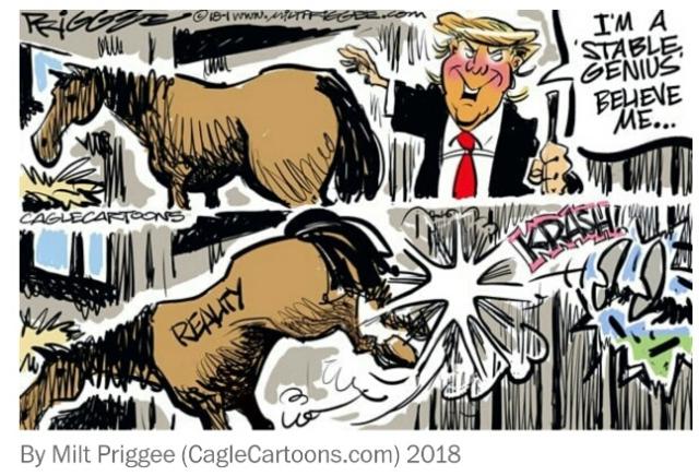 Trump Wapost